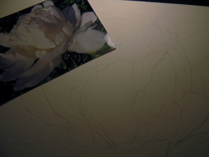 white flower 011
