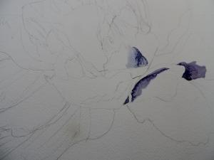 white flower 016