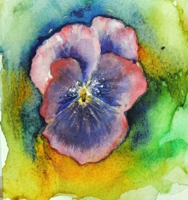 Day 16 Pansy