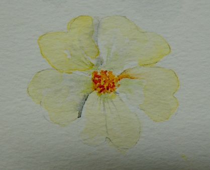 Day 19 Dainty flower